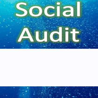 Social Audit Services