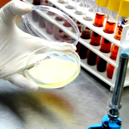 Microbiology Testing Labs in Sikkim